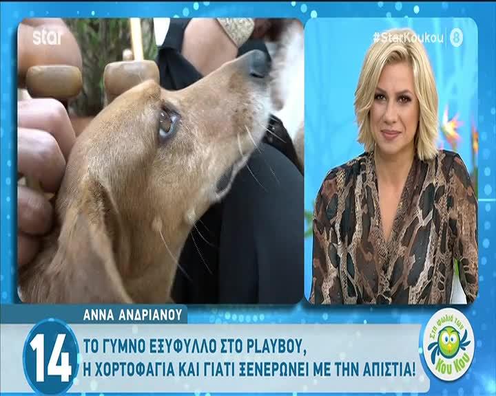 Άννα Ανδριανού: Το εξώφυλλο του Playboy, η χορτοφαγία & η απιστία